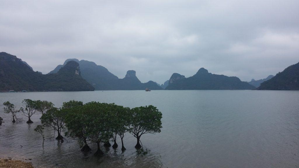 Widok na zatokę Lan Ha